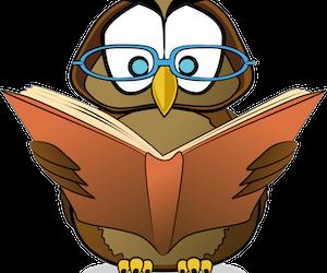 Anketni upitnik o potrebama korisnika i knjižničara za e-izvorima